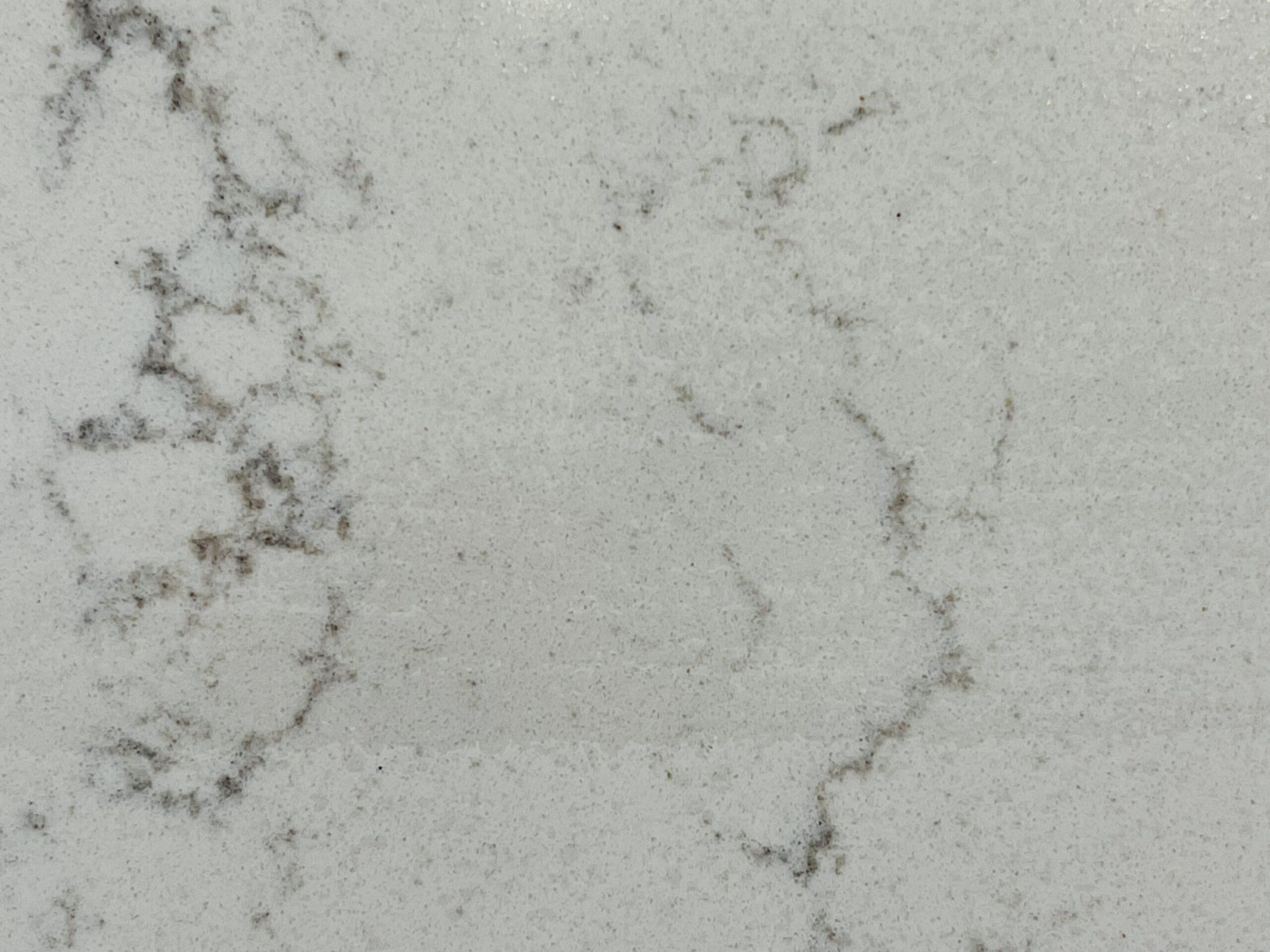 Carrara Botticelli (Closeup)